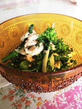 菜の花のサラダ お浸し 作りおき