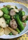 春の味★鶏肉と春野菜のサラダ感覚塩炒め