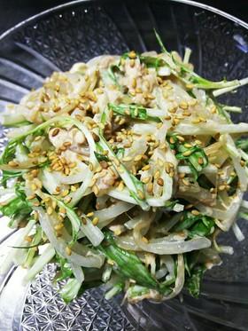 もやしと水菜のツナマヨぽんサラダ