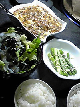 甘辛マーボー豆腐
