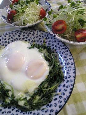 ✿水菜のしゃきしゃき巣ごもり☆卵のせ✿