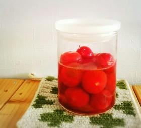 材料3つ♪プチトマトのハチミツマリネ