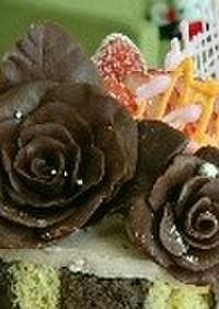 プラスチックチョコレート(プラチョコ)