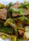 春キャベツと豚肉の鉄火味噌炒め
