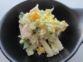 【京都丹波】新玉ねぎマカロニポテトサラダ