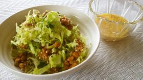 キャベツと納豆のサラダ