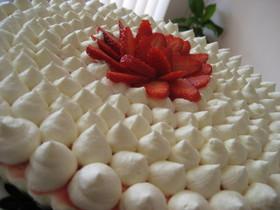 レアチーズケーキのデコレーション
