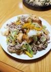 簡単スピード沖縄料理!フーチャンプルー2