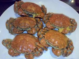 今が旬!!上海蟹