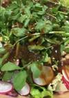パリパリ食感 皿うどんでサラダ