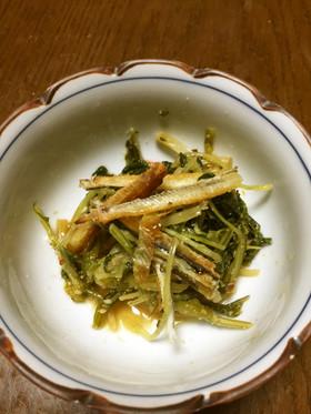 焼き穴子とほうれん草・水菜のごま和え