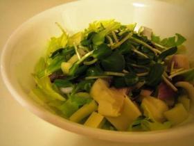 Sproutsのサラダ