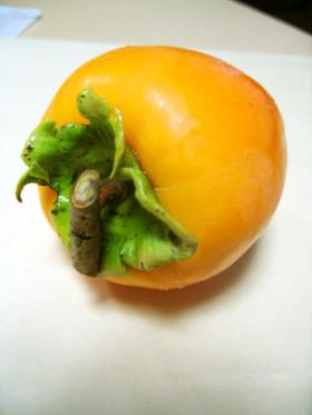 はちや柿の食べ方