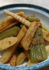 フキと細竹の子の油炒め