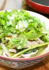 野菜の味が生きてる美味な春雨ヌードル