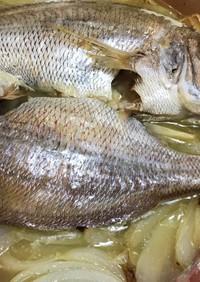 チダイ・真鯛のオーブン焼き
