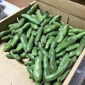 そら豆の茹で方&冷凍保存