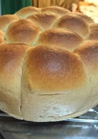 ほわっほわ!手ごねで黒糖ミルクちぎりパン