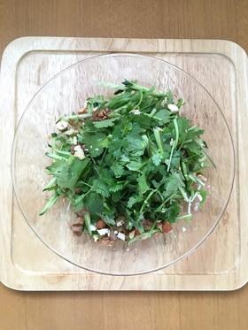 野菜たっぷり♪ベトナム風香菜サラダ