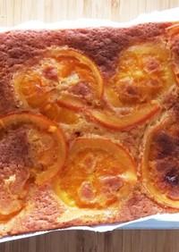 フレッシュな清見オレンジのケーキ