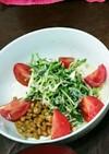豆苗と納豆のサラダ