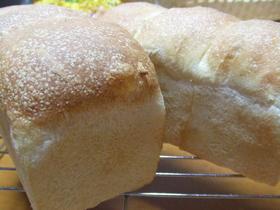 リーンタイプのミニ山形パン