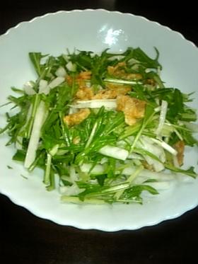 カリシャキサラダ
