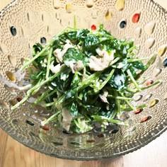 豆苗とツナのラー油マヨサラダ