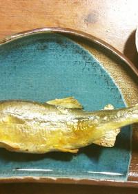 蓼酢(たでず)鮎の塩焼き用
