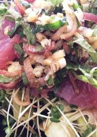 薬味たっぷり!さっぱり海鮮サラダ