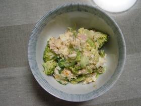 ブロッコリのいろいろサラダ(大人風)