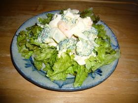 えびとブロッコリーのサラダ☆