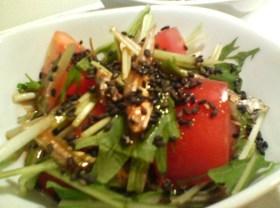 カルシウム摂ろう☆煮干し入りサラダ