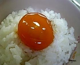 卵黄♡オイスターソース漬け