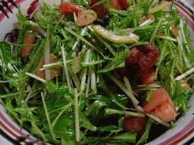 壬生菜のシャキシャキサラダ