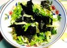 千切りレタスと焼き海苔のサラダ♪