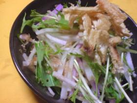 大根と水菜のサクシャキサラダ