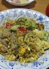 高野豆腐と豚肩ロースのゴーヤチャンプルー