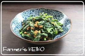 【農家のレシピ】モロヘイヤの納豆和え