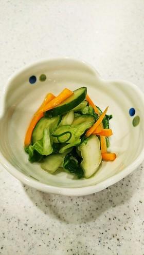 白菜とキュウリとにんじん✩浅漬け