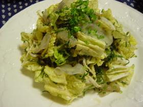 ご馳走☆白菜サラダ