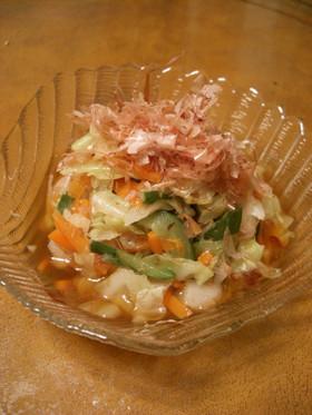 梅味いろいろ野菜の酢の物