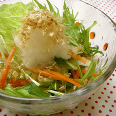 和風☆スープ仕立ての水菜サラダ