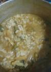 ゴーヤのカレー雑炊