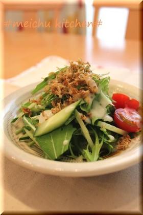 簡単!水菜じゃこサラダ。