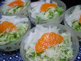 白菜☆サラダ