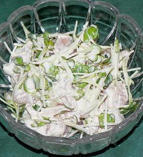 鶏ささみとかいわれ菜の梅マヨネーズ和え