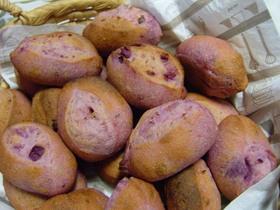 天然酵母の紫芋パン