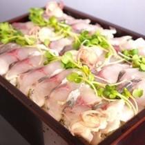 鯵のお寿司