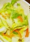 白菜の本格風『手抜き浅漬け』